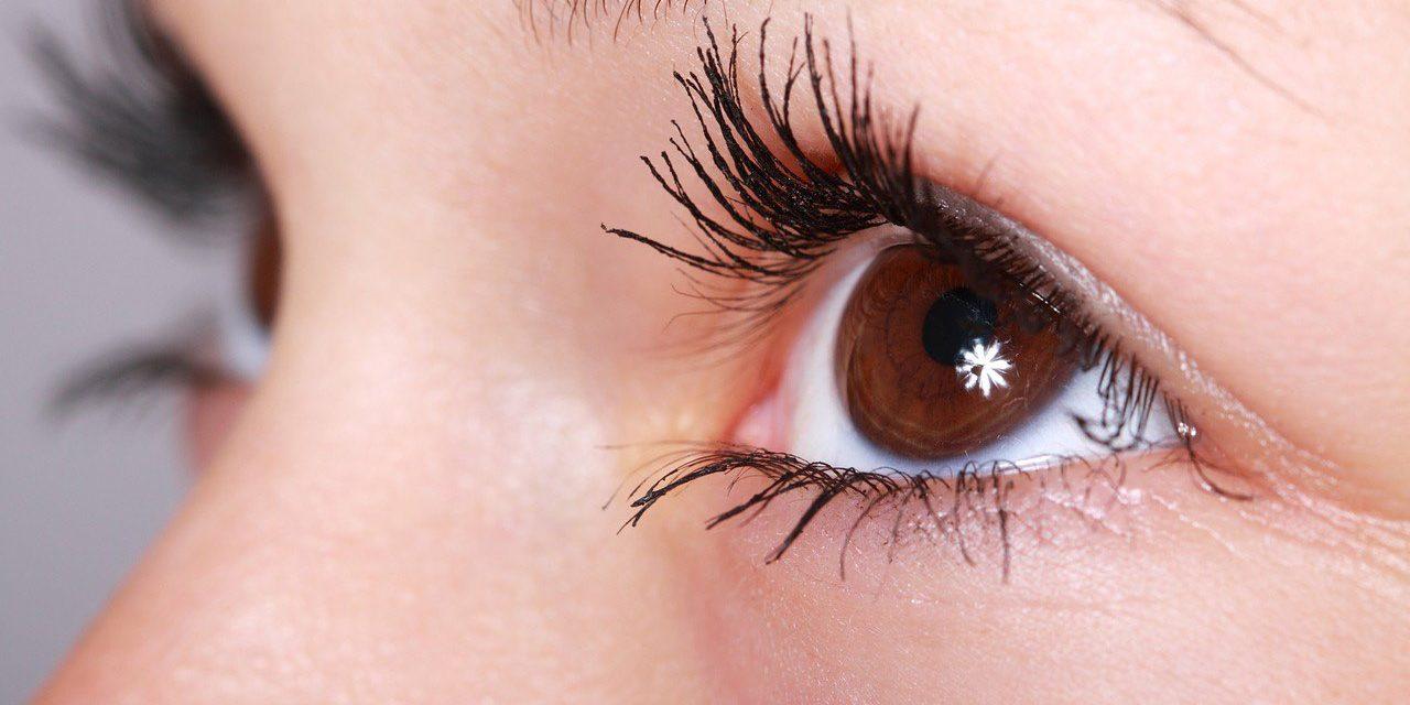eye-brown-twinkle-close-up